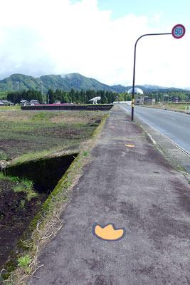 福井県内陸部・勝山郊外にある恐竜博物館と恐竜の足跡形案内標示