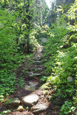 石段が続く、福井県内陸部・勝山郊外にある村岡山尾根道への登り