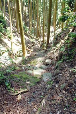 京都市街東部・山科北山中にある安祥寺上寺跡関連の古道跡とみられる観音平横の谷沿いの整地帯と石段的痕跡