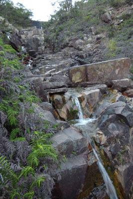 湖南アルプスの岩床の沢