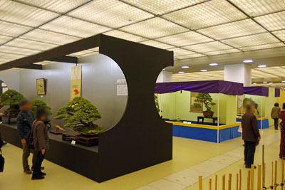 京都市街東部の「みやこめっせ」で開かれた「第38回日本盆栽大観展」の会場風景