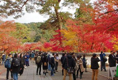 京都市街東部にある永観堂の紅葉と参観者の賑わい