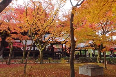 京都市街東部にある真如堂の本堂裏の紅葉