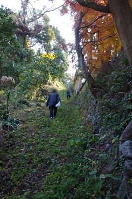 京都東山山麓にある興正寺本廟の裏道