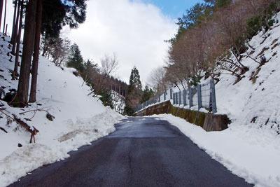 両斜面に雪積る、京都市街北部山中の芹生峠