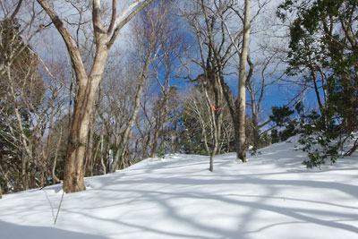 京都市街北部の芹生集落北奥の、雲取山山頂下の新雪質の急斜