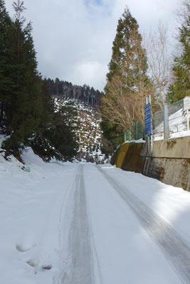 雪に覆われる、京都市街北部山中の芹生峠