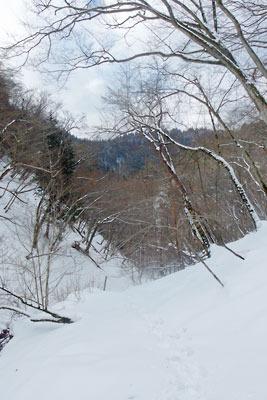 京都・雲取山山頂へと続く支流谷の深雪と急登