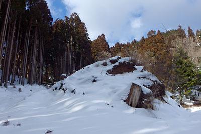京都市街北部山中の花脊古道を塞ぐ植林地上部にある改変地形