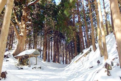 大杉傍の大日堂共々雪に埋もれた、京都市街北部山中の旧花背峠