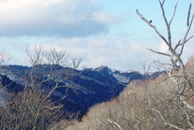 京都市街北部山中の天狗杉近くの稜線から見た、花脊集落の谷と背後に聳える雲取北峰