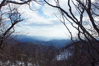 天狗杉山頂付近からの京都市街の眺め