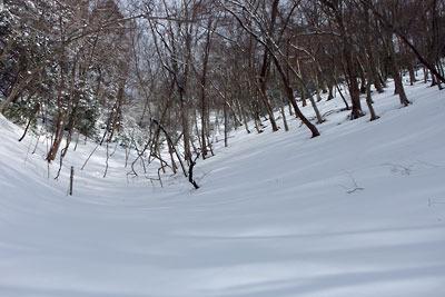 京都・雲取山主峰直下の雪の急登