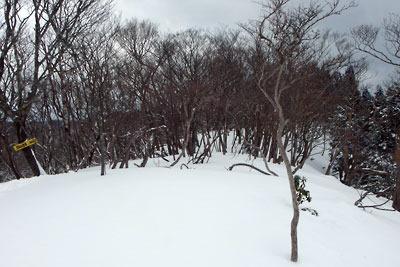 雪積る、京都市街北部にある雲取北峰山頂