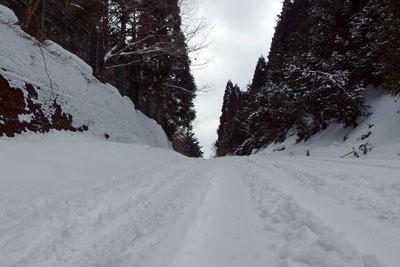 夕方に至るも雪が多く残る、京都盆地北縁山中の芹生峠