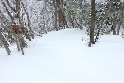 雪上に踏み跡のない、京都・雲取山主峰山頂