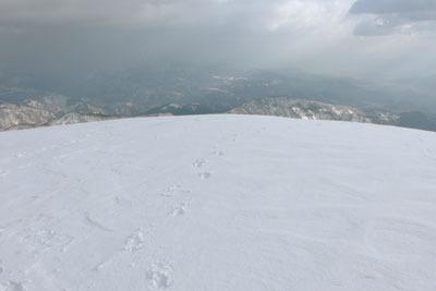 越前甲山頂からみた白山方面