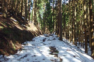 京都・雲取山の三ノ谷奥地の残雪