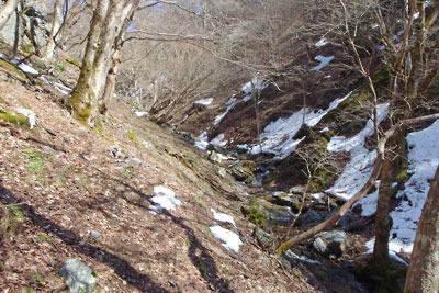 雪解けした、京都・雲取山主峰直下の支流谷