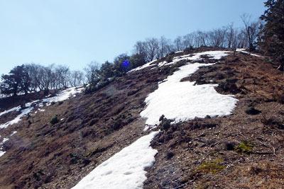 北東尾根から仰ぎ見た雪解け進む、京都・雲取北峰山頂