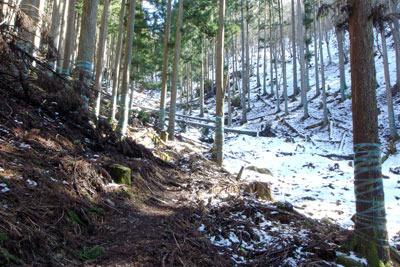 昨日の降雪残る、滋賀県比良山脈南西麓・平集落からの谷道