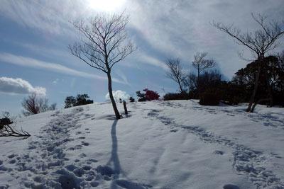 滋賀県比良山脈南部の権現山北方の残雪