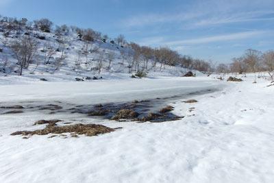 滋賀県比良山脈南部山上にある小女郎ヶ池北側の融解池面