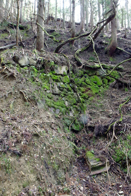 滋賀県比良山中に残る旧国道367号・花折峠道の古い石垣
