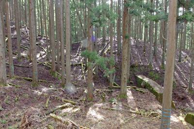 滋賀県比良山中の旧花折峠道上に残る切通しの道跡
