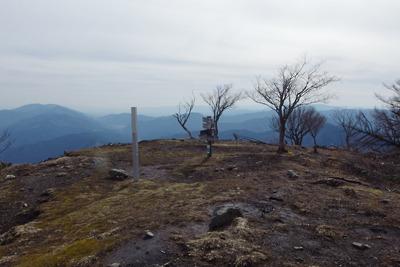 雪解けした滋賀県比良山脈南部の権現山山頂