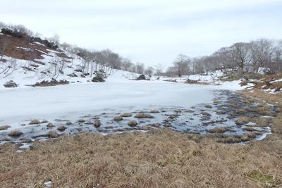 周辺に土の露出広がる小女郎ヶ池北側