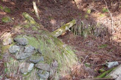 滋賀県西北・赤岩山麓の登山口の炭焼窯跡