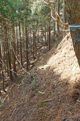 滋賀県西北・赤岩山麓の急斜の巻き道