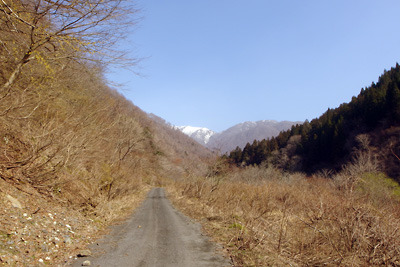 能郷谷より見た雪残る能郷白山の一部「前山」