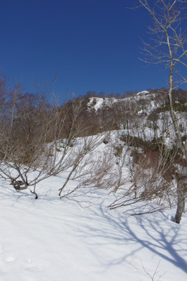 能登谷西の稜線