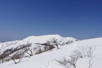 岐阜県北部の前山から見た能郷白山山頂