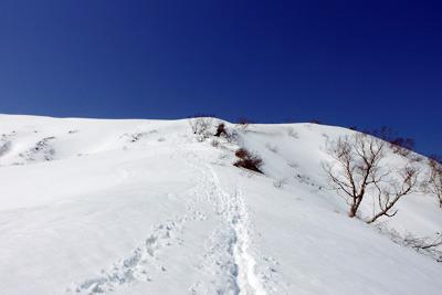 能郷白山頂上への雪の急登