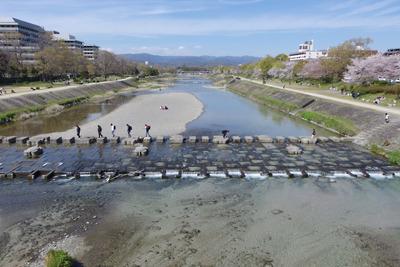 荒神橋から見た、いつもより水が澄む京都・賀茂川(鴨川)