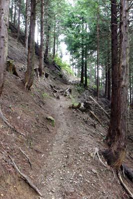 三重側から鞍掛峠へと続く巻き道の御池岳登山道