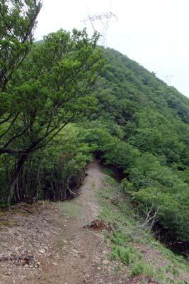 鈴鹿山脈の鞍掛峠手前の稜線道