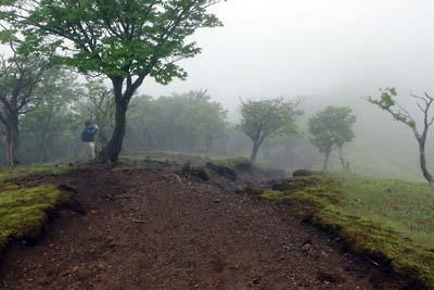 鞍掛峠と鈴北岳間の広くなだらかな高原状尾根