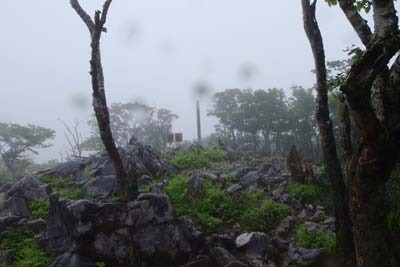 雨の森なかの登坂の果てに見えた、鈴鹿山脈・御池岳の山頂標柱