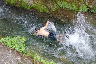 京都市街北部・芹生集落を流れる灰屋川の強く冷たい流れに逆らい元気よく泳ぐ避暑泊同行者