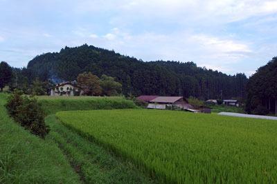 方々で稲穂が実る豊かな農村景を見せる、京都市北部の山上集落「氷室」
