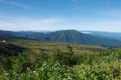 立山高原バスの車窓から見た、溶岩高原で高層湿地の「弥陀ヶ原」