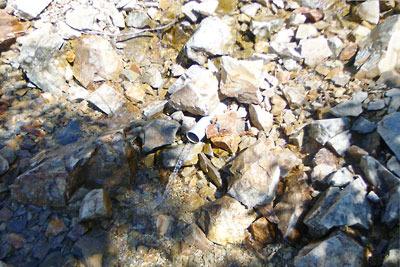 不毛の石礫谷の底に美味の清水が伝う、槍ヶ岳右俣登山路の最終水場