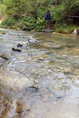 令和元年台風19号による増水で飛石が沈んだ太神山地の沢と、裸足で渡渉した野営会参加者