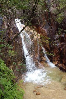 風化花崗岩による痩せた地表を流れ下る、増水した滋賀県・湖南アルプスの沢水