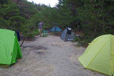 滋賀県・湖南アルプスの野営地に張られた野営会参加者のテント