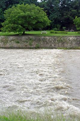2010年7月15日の梅雨前線大雨により、濁流がたぎる京都・賀茂川